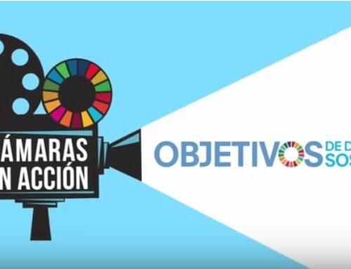 Col. Fuensanta (Valencia): cámaras en acción